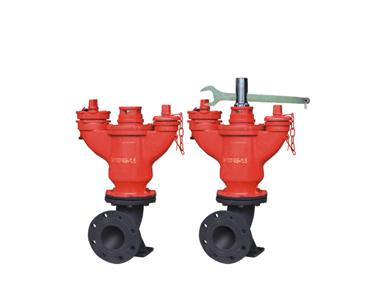 地下式加密消防栓/CFSA100/65-1.6